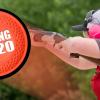 spring-2020-State-Banner (1)